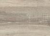 Дуб бардолино серый