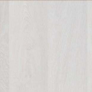 Дуб шервуд белый